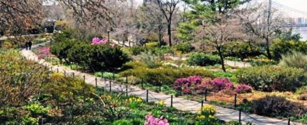 5 Heather Garden
