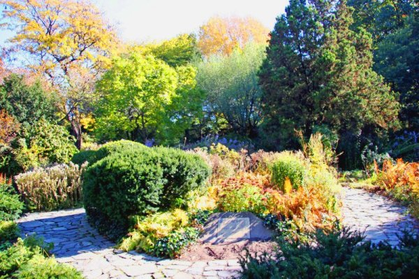 6 Shakespeare Garden