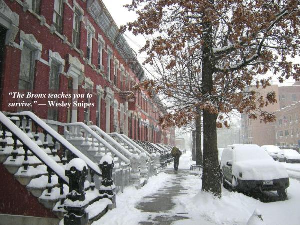a-01-16-snowy-bronx