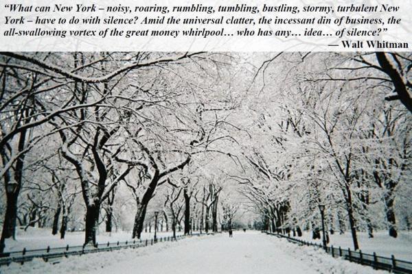 a-02-16-snowy-central-park